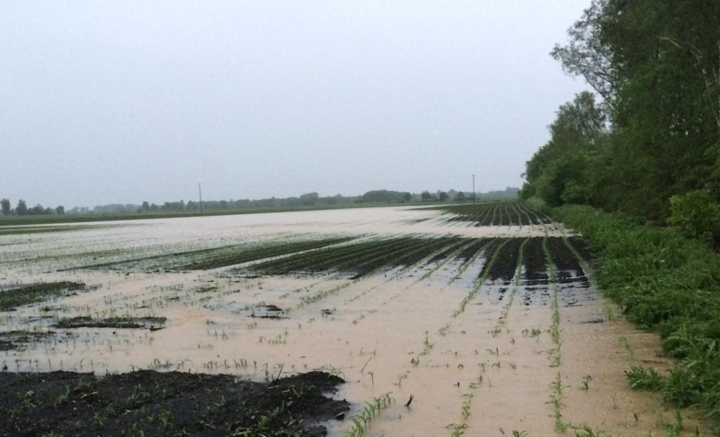 Hochwasser im Risstal Mai 2016